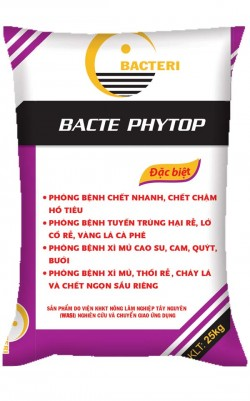 Bacte Phytop -Vs