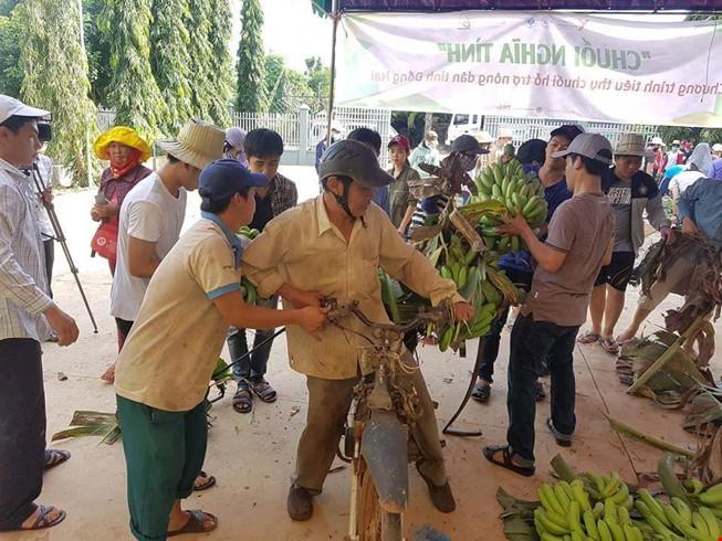 Giải cứu chuối: Nước mắt nông dân và tình nguyện viên